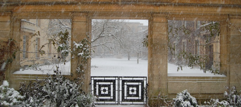cropped-snow-view-from-robs-garden